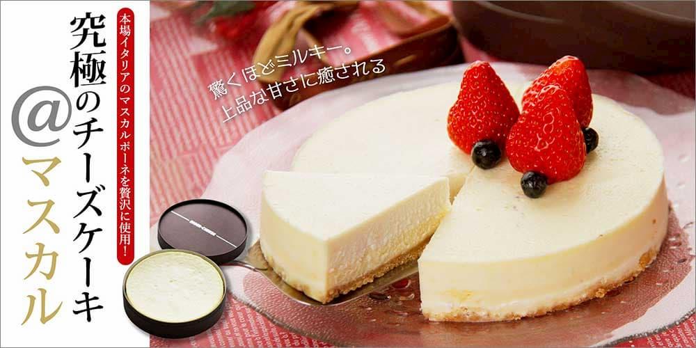 創立21周年記念【送料無料】究極のチーズケーキ @マスカル