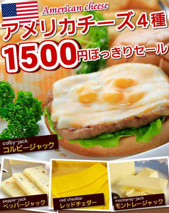 ■アメリカが生みだした大活躍チーズ4種!ご好評につき 【1週間限定】 で再登場♪4種類のチーズの、どれを選んでも…1000円ポッキリ
