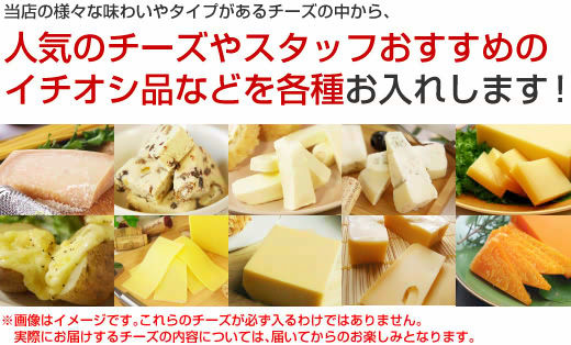 当店の様々な味わいやタイプがあるチーズの中から、人気のチーズやスタッフおすすめのイチオシ品などを各種お入れします!