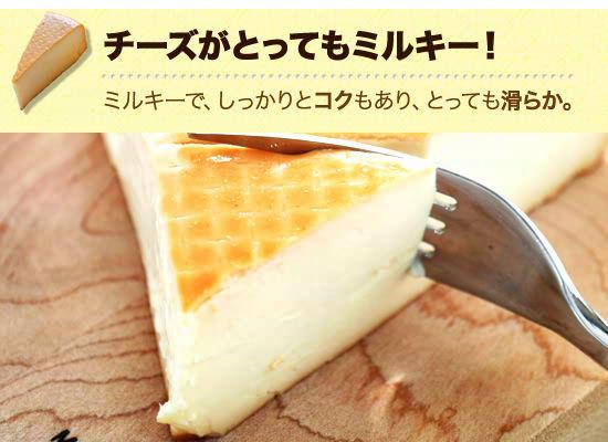 ● チーズがとってもミルキー!ミルキーで、しっかりとコクもあり、とっても滑らか。
