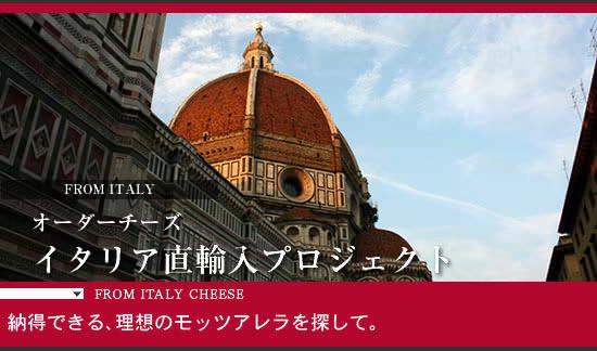 オーダーチーズイタリア直輸入プロジェクト 納得できる理想のモッツァレラを探して