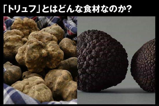 ●「トリュフ」とはどんな食材なのか?