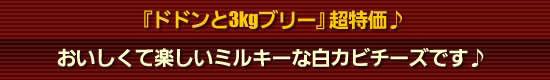 どドント3kgブリー超特価!