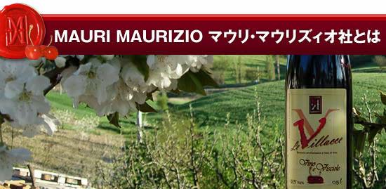 【MAURI MAURIZIO(マウリ・マウリズィオ)社】とは