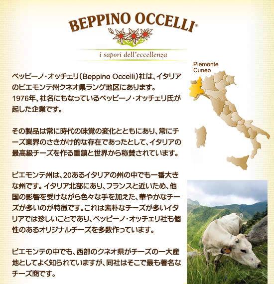 ★BEPPINO OCCELLI(ベッピーノ・オッチェリ)とは?