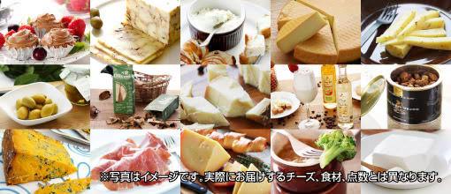 チーズと食材のイメージ