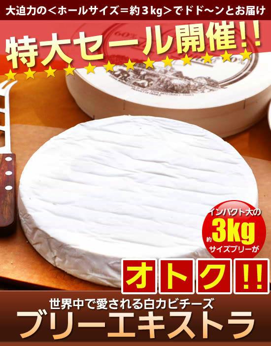 3kgサイズがお得!世界中で愛される白カビチーズ。ブリーエキストラ