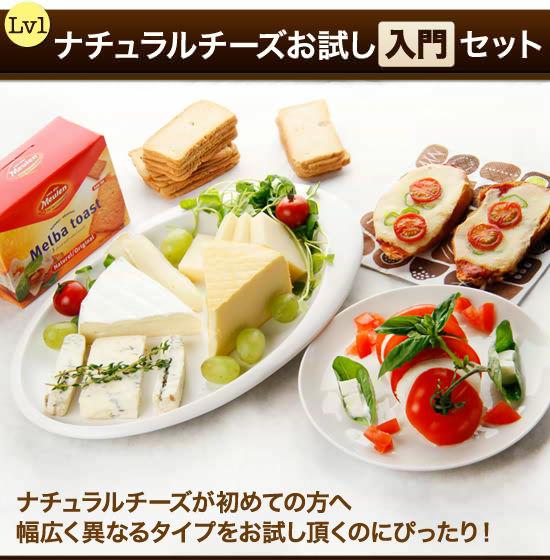 『ナチュラルチーズお試し【入門】セット』美味なるナチュラルチーズをバランスよく楽しめる!