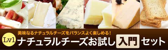 ナチュラルチーズお試し【入門】セット