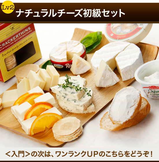 『ナチュラルチーズ初級セット』<入門>の次は、ワンランクUPのこちらをどうぞ!