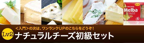 ナチュラルチーズ初級セット