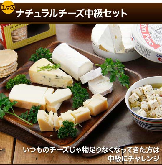 『ナチュラルチーズ中級セット』いつものチーズじゃ物足りなくなってきた方は中級にチャレンジ