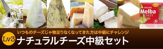 ナチュラルチーズ中級セット