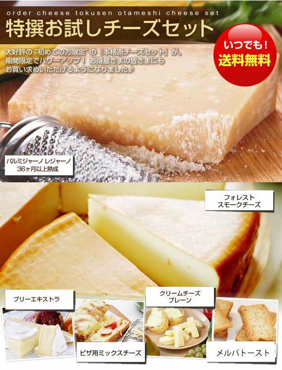 『特撰お試しチーズセット』