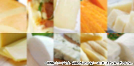人気のチーズ