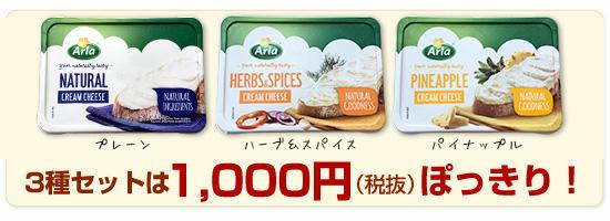 3種セットは「1,000円(税抜)」ぽっきり!