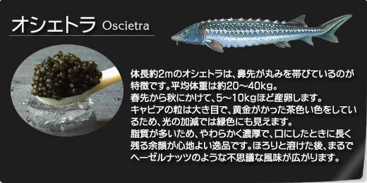 オシェトラ(Oscietra)