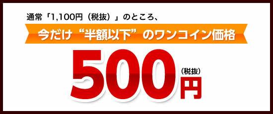 「500円(税込540円)」でご提供いたします!