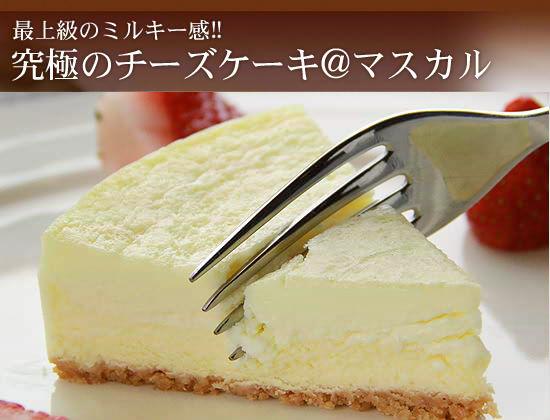最上級のミルキー感!『究極のチーズケーキ@マスカル』