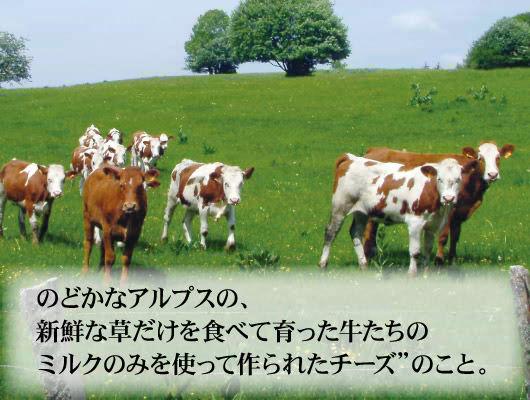 """""""のどかなアルプスの新鮮な草だけを食べて育った牛たちのミルクのみを使って作られたチーズ""""のこと。"""