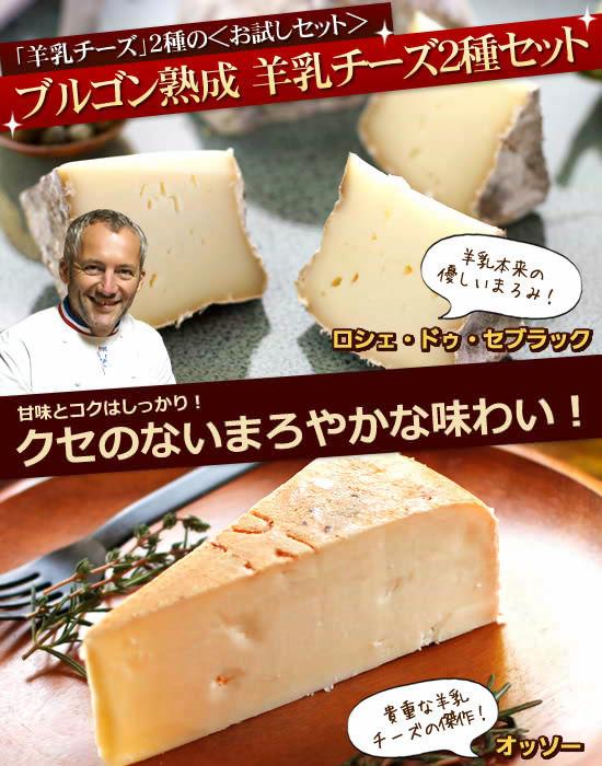 『ブルゴン熟成 羊乳チーズ2種セット』登場!