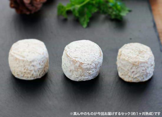 【ブルゴン熟成】クロタン・ド・シャヴィニョルAOP セック(約1ヶ月熟成)(約60g)