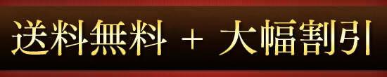 【送料無料】+【大幅割引】