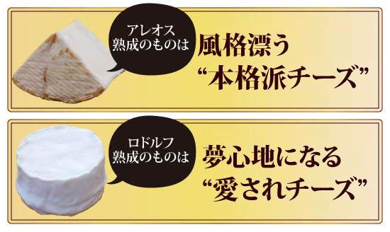"""●アレオス熟成のものは、風格漂う""""本格派チーズ""""●ロドルフ熟成のものは、夢心地になる""""愛されチーズ"""""""