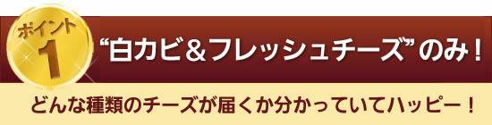 """内容は""""白カビ&フレッシュチーズ""""のみ!"""