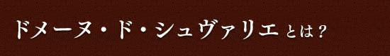 【ドメーヌ・ド・シュヴァリエ】とは?