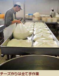 チーズ作りは全て手作業