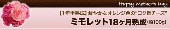 """<5>【1年半熟成】鮮やかなオレンジ色の""""コク旨チーズ"""""""