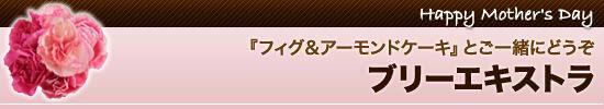 【4】『フィグ&アーモンドケーキ』とご一緒にどうぞ