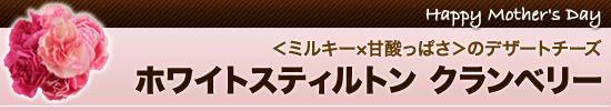【1】<ミルキー×甘酸っぱさ>のデザートチーズ