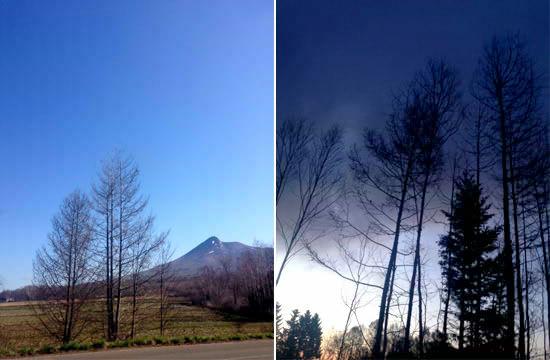 空気の澄みわたった大自然が広がる北海道の山の中