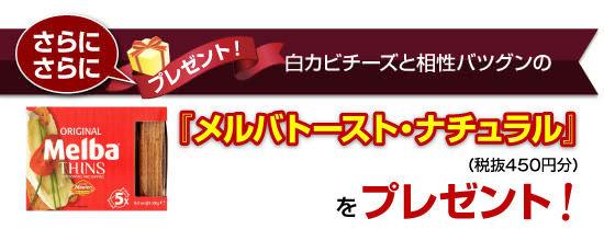 +さらに!白カビチーズと相性バツグンの『メルバトースト・ナチュラル』(税抜450円分)をプレゼント!