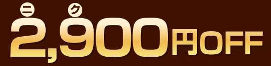【2,900(ニク)円】OFFの超特価