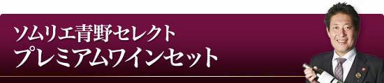 『ソムリエ青野セレクト プレミアムワインセット』