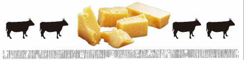 チェダーチーズとは?