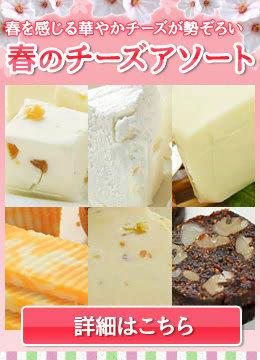 春のチーズアソート