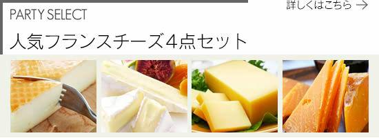 【パーティーセレクト】人気フランスチーズ4点セット
