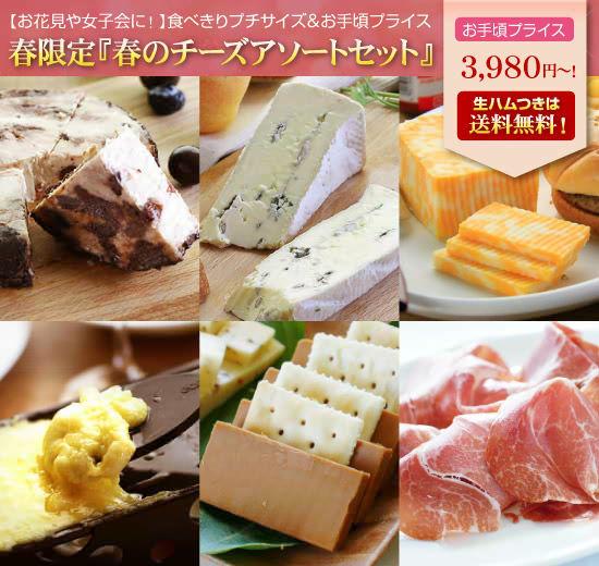 春のアソートチーズセット★送料無料セット(生ハム入り)もあり