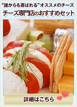 チーズ専門店のおすすめセット(送料無料)