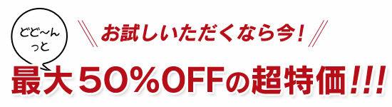 お試しいただくなら今!どど~んっと 【最大50%OFF】 の超特価!!!